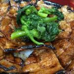 【食べ尽くし】① 新橋 豚大学 豚丼 大盛+お茶漬けセット